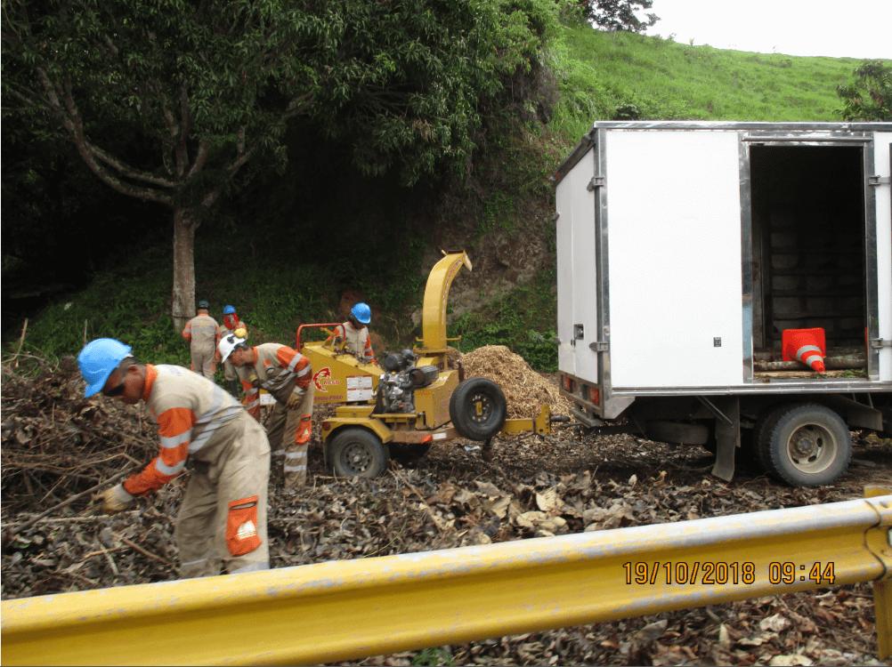 Chipeado de biomasa vegetal producto de las actividades de aprovechamiento forestal en uf3 - El material chipeado es reincorporado a los ecosistemas aledaños al proyecto - Octubre 2018